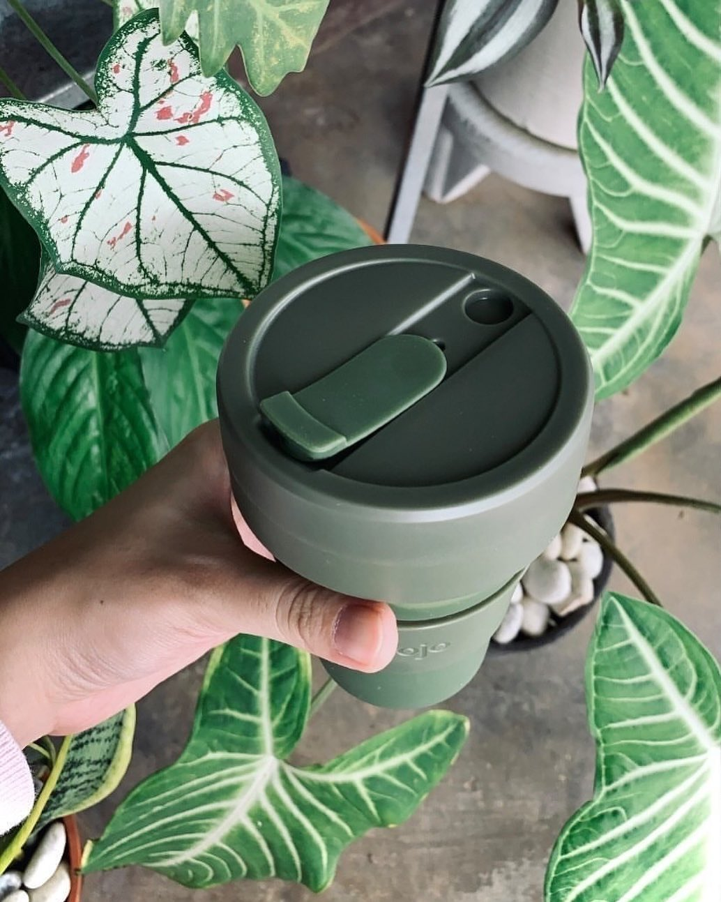 Green-cup-with-leaves